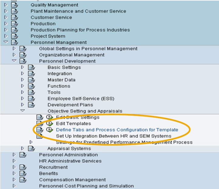 Ricefw's in sap projects and role of functional consultant | sap blogs.